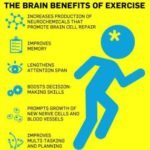 The Brain Benefits of Excercise